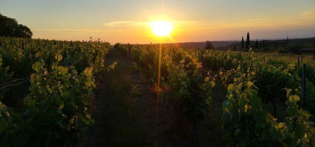 Urlaub in der Toskana – Reiseziele und Sehenswürdigkeiten